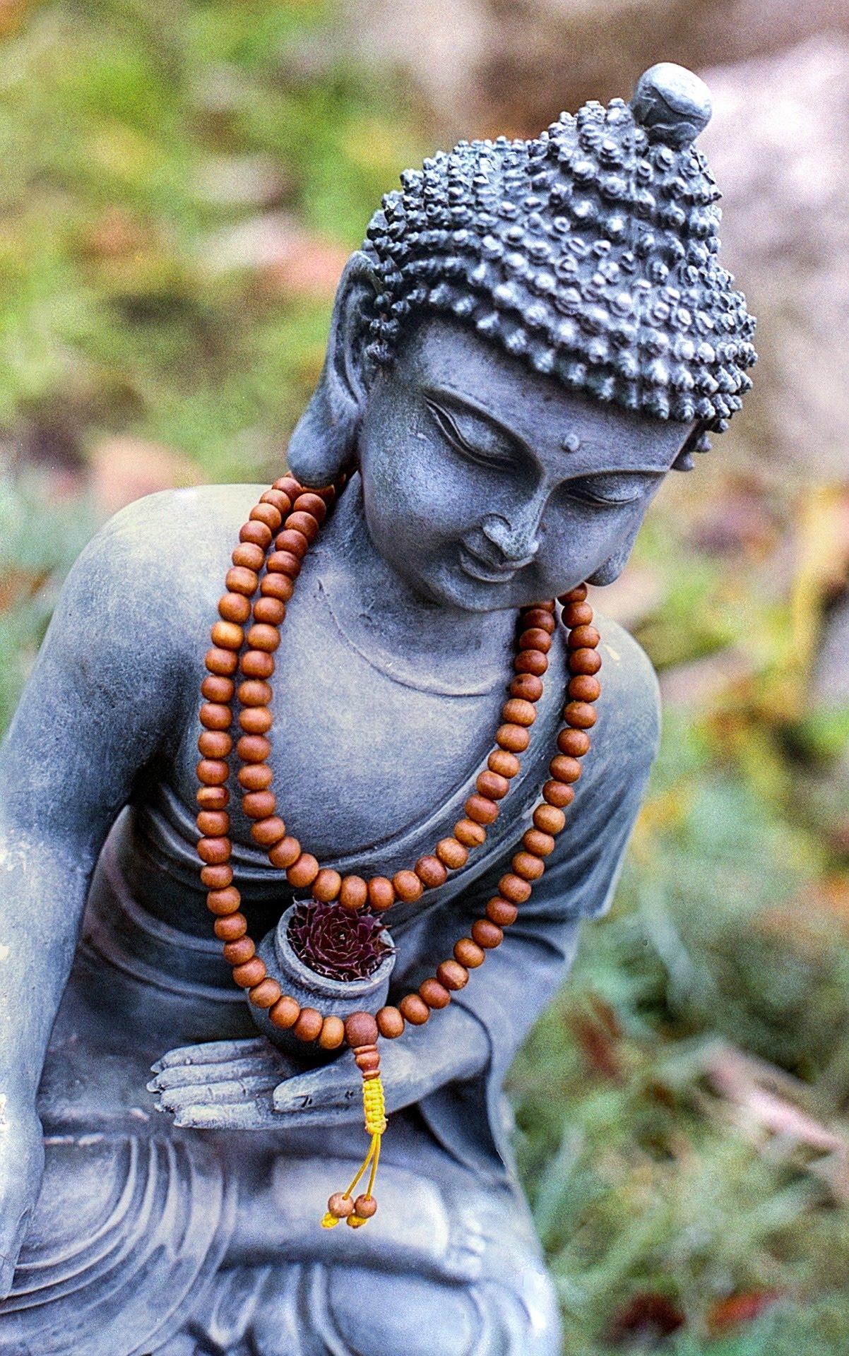 dieta-buddista